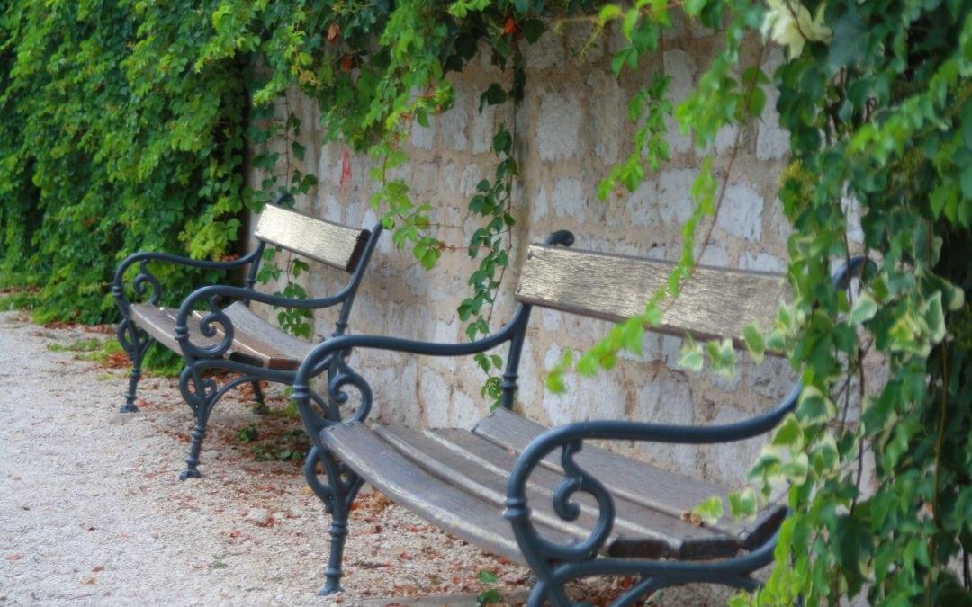 Faire de l'espace public un espace convivial et propice à la biodiversité